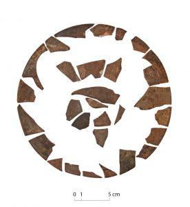 Cive trouvé dans les thermes de Taposiris (© MAFTP 2016)